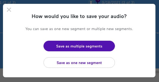 Save as multiple segments